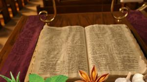 6 alimente vindecătoare, menționate chiar în Biblie