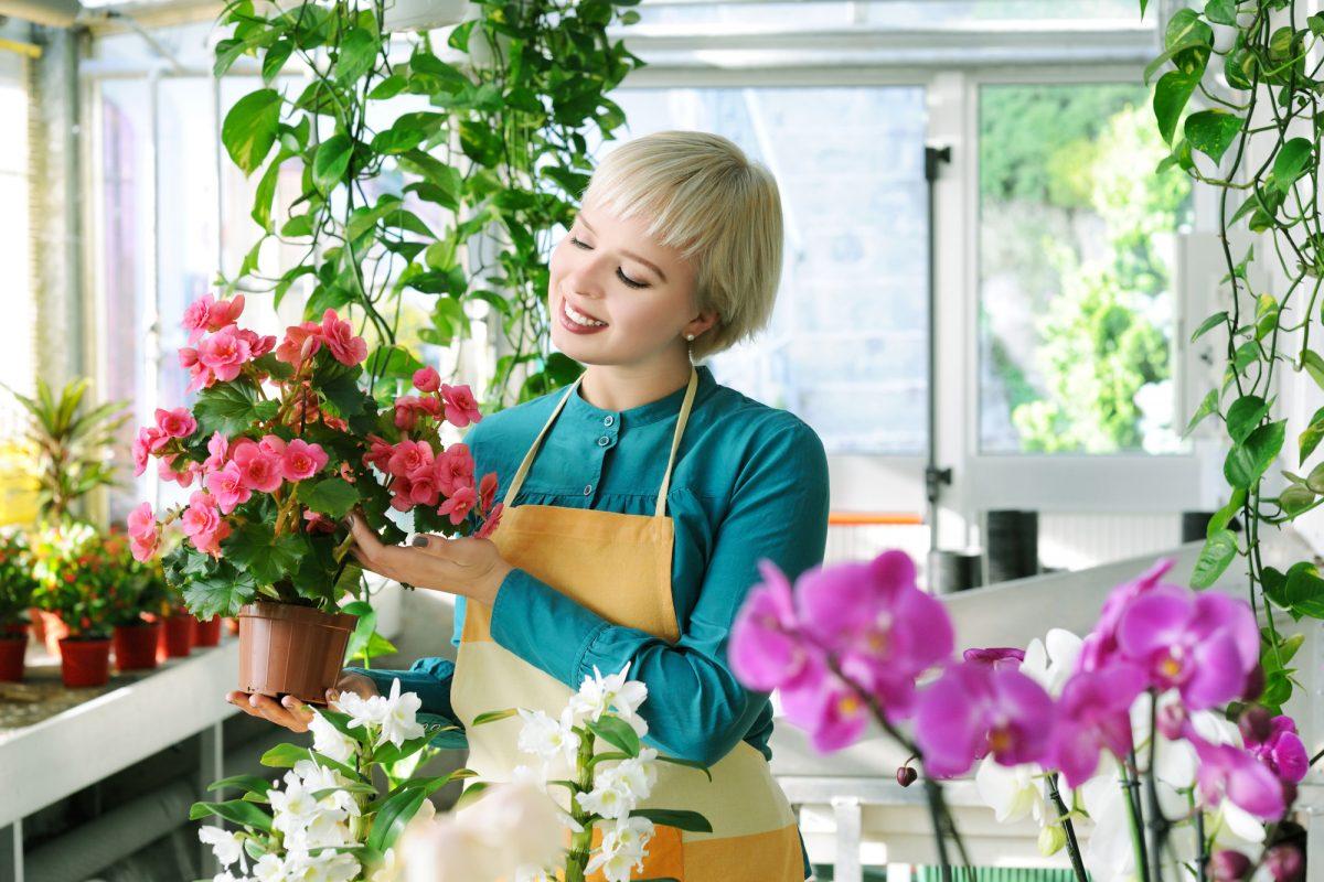 Solutii eficiente cu care poți uda plantele de interior. Vor fi mai sănătoase și mai viguroase, pline de flori minunate