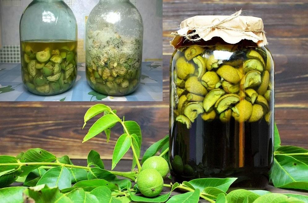 Este timpul să culegi nucile verzi – Trebuie să fie astfel încât să poată fi străpunse cu un ac. Preparate și beneficii
