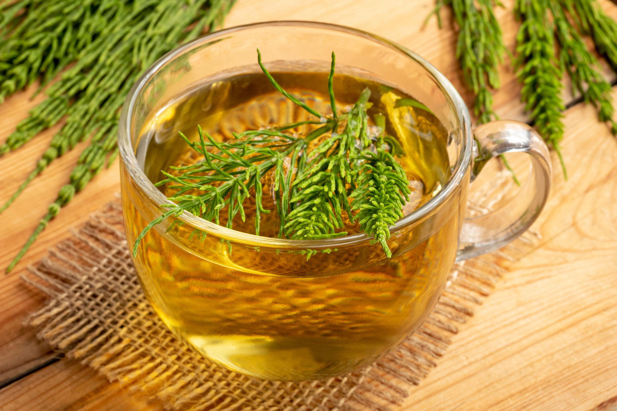 Beneficii uimitoare ale ceaiului de coada-calului